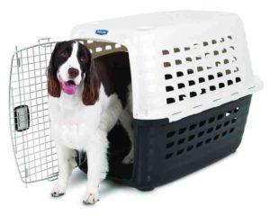 Shipping Pets - choosing pet kennel